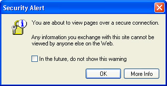 SAMPLE SECURITY WARNING WINDOW